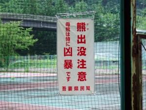 ゆずりはテニスコートに熊の注意が!!特に、小熊が出てきたら危険というわけです。