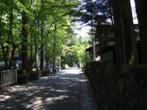旧軽銀座を過ぎれば、緑に囲まれた通りに様変わります。この通りからは、別荘街となりますが、それよりも夏でも涼しい軽井沢らしい道です。