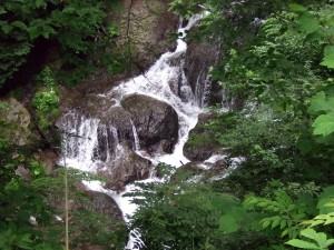 しかし、この日は雨も降らず、無事に魚止め滝と浅間大滝の両方を見物出来て本当にラッキーでした♪