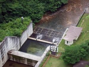 四万川はダムから流れていますが、もし突然の鉄砲水だったら危険過ぎします。