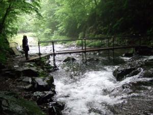 ここの小さな橋は、滝をじっくり見物するために作られています。(浅間大滝は特別有名とはいかないと思いますが、シーズンになると観光客で混雑するのか?・・・は詳しくは分かりません。)