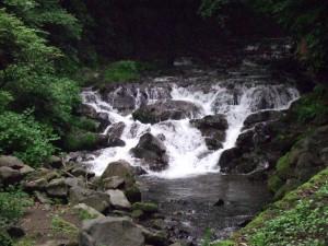しかし、大滝が近づくと岩の階段に変わり、この辺りがかなり湿っていて滑りやすい状態です。