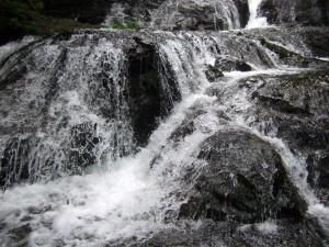 魚止めの滝は、割となだらかなようで勢いよく流れています。
