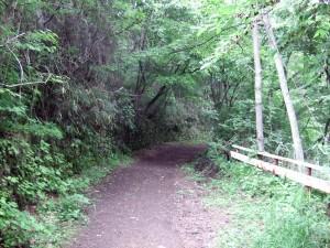 昨夜は雨が降った後なので、道全体はぬかるんでいる状態でした。この先は、ちょっと急な階段を下ります。