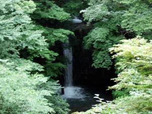 ゆずりは荘の近くに小泉の滝があります。秋にはきっと紅葉がキレイでしょう。そばにはキチンと休憩所が設置しています。