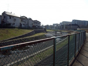 ここ空堀川周辺でもかつては寂しい雑木林だった所が、今では大学や住宅だらけ。