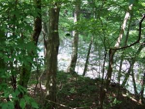 向こう側に暗いトンネルがひょっこり小さく見えます。多分水路でしょうか?