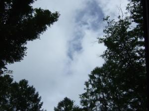 丸山珈琲にてしばらく過ごしてからは何と青空の姿をみせてくれました!