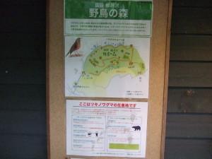 野鳥の森の案内