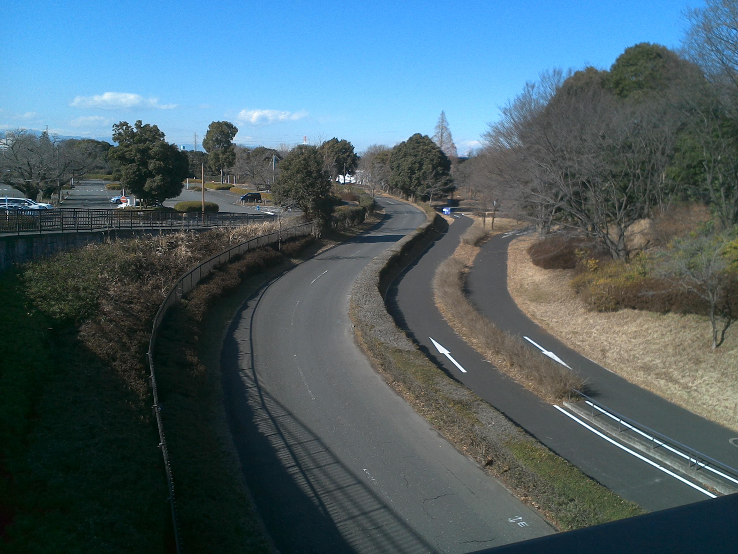 昭和記念公園のサイクリング道
