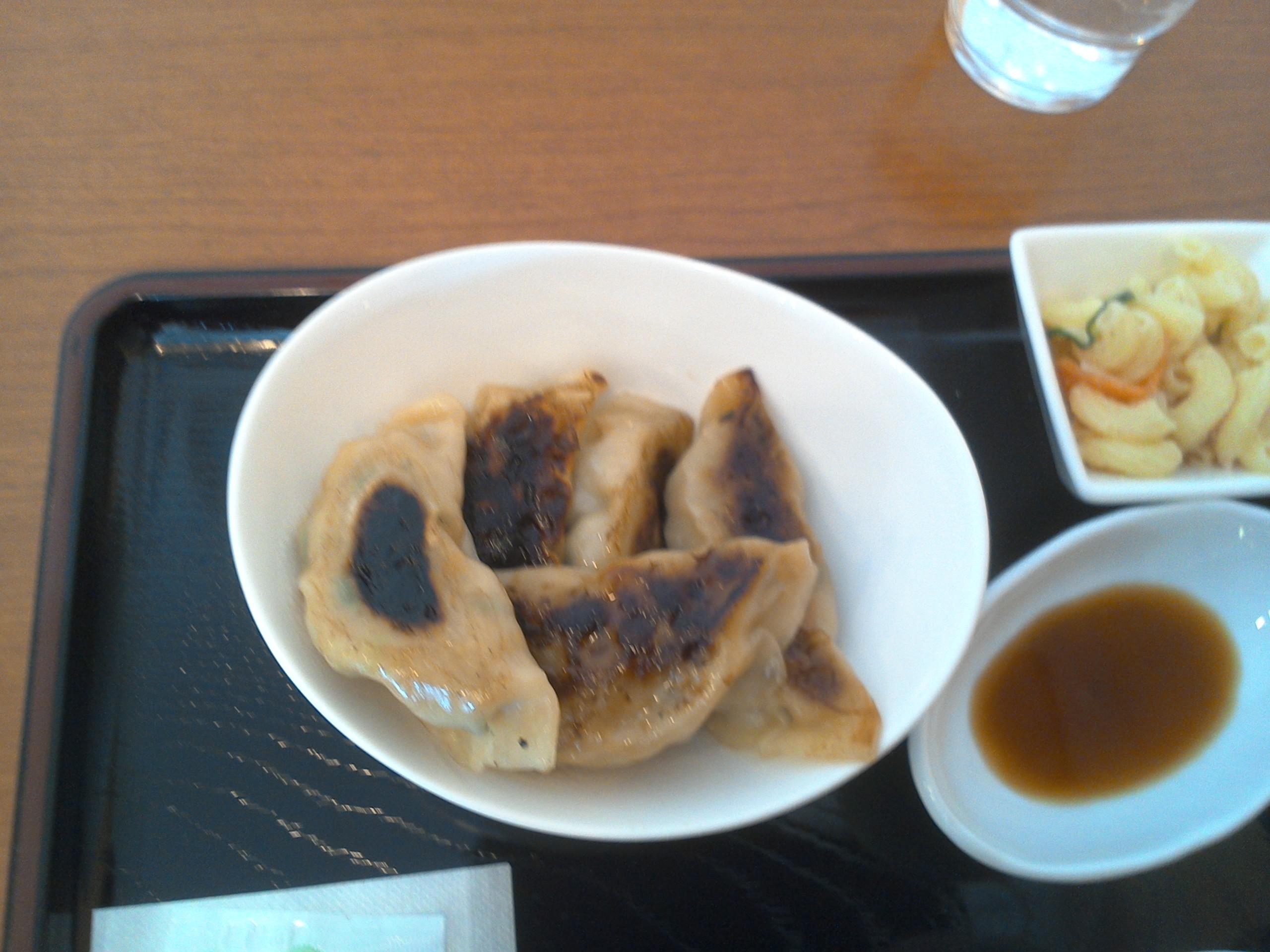 ちょっと焼き過ぎて黒く焦げた餃子ですが。。。でも、ボリュームもあり、味はさっぱりヘルシーで美味しかったですよ。皮も手作りみたいな感じでした。