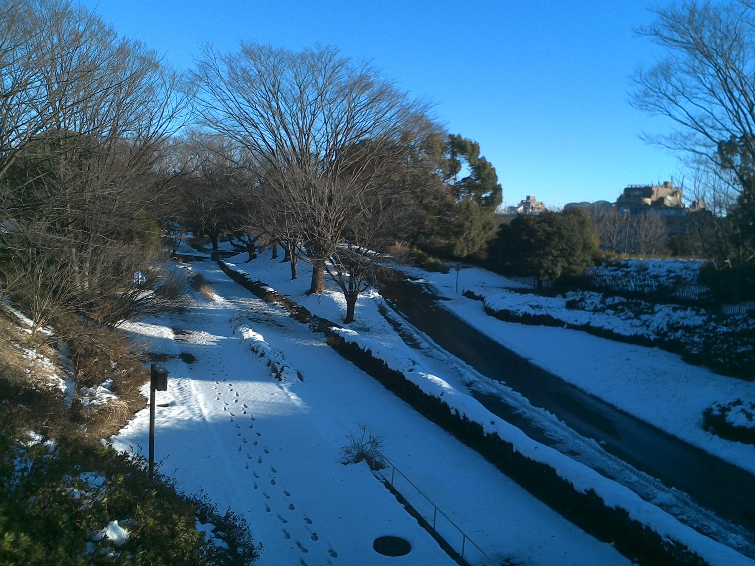 橋からみた雪景色