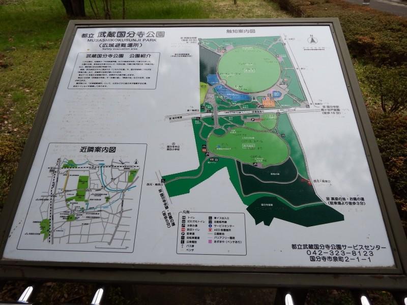 公園周辺の案内地図