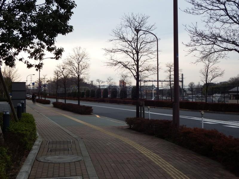 武蔵国分寺公園を出て、駅へ向かう整備された道を歩きます。この通りは官公庁の研究所および高級マンション並みの職員の家族寮が並びます。