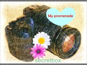 My promenade image