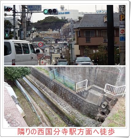 国分寺駅南口右方向の多喜窪通りをまっすぐ進み、坂を下ります。途中で野川を見つけました。