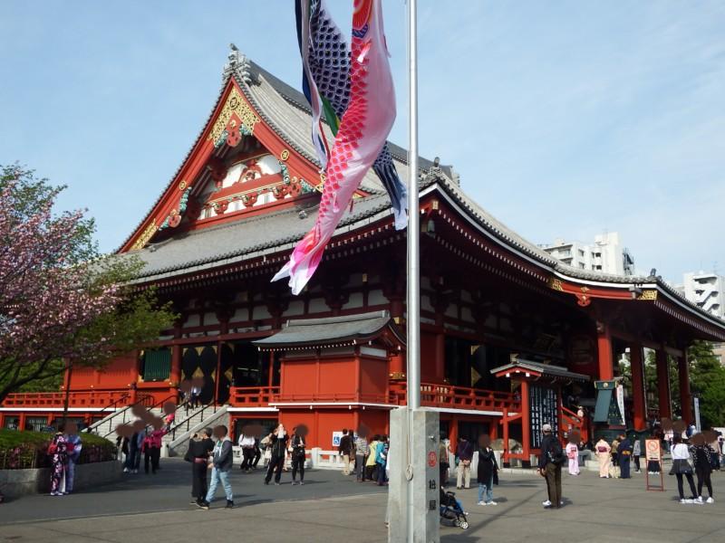 浅草寺の本堂。そばにはもう鯉のぼりが立っています。