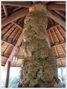 """さあ、ここで""""?(クエスチョン)""""です。この不思議な柱は何の柱でしょうか?答えは下の写真にあります。"""