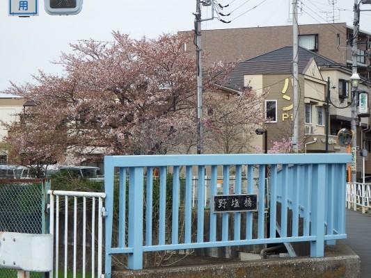 目的の野塩橋はちょうど志木街道沿いです。