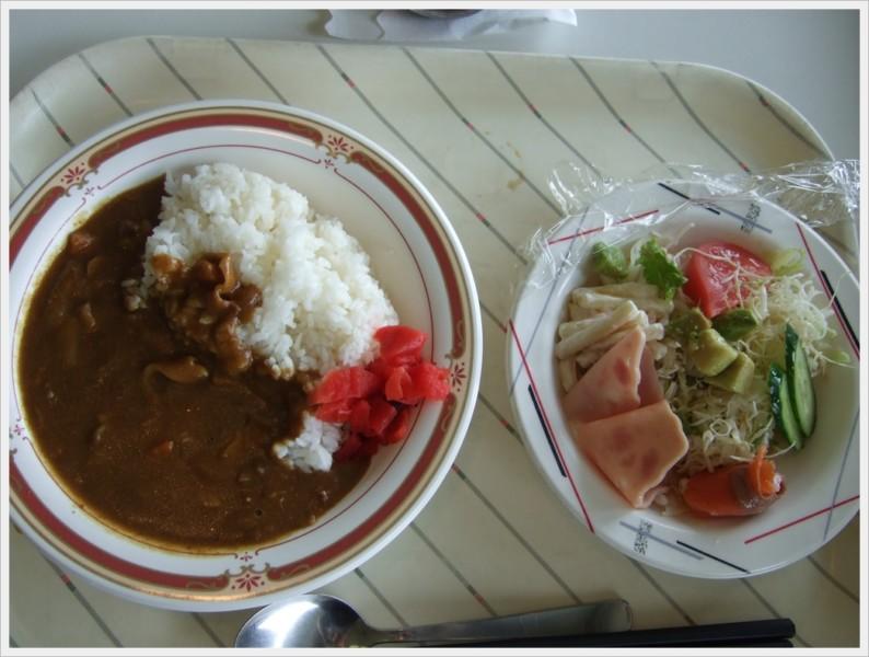 カレーライス(380円)&サラダ(180円)