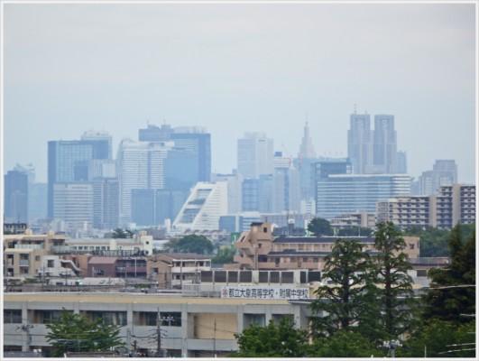 屋上ガーデンから新宿副都心