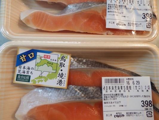 日本海荒波育ちの銀鮭