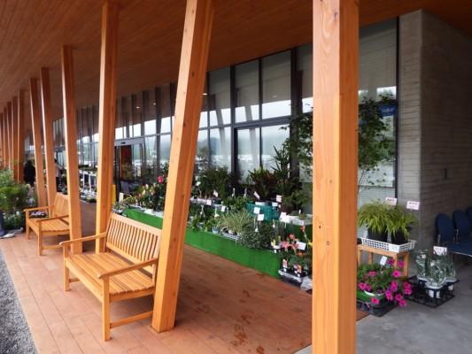 道の駅の外観は木の造り