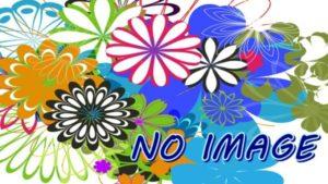 """ページの一覧のアイキャッチ無し""""no-image""""のデザインは鮮やかな花柄模様にしました。"""