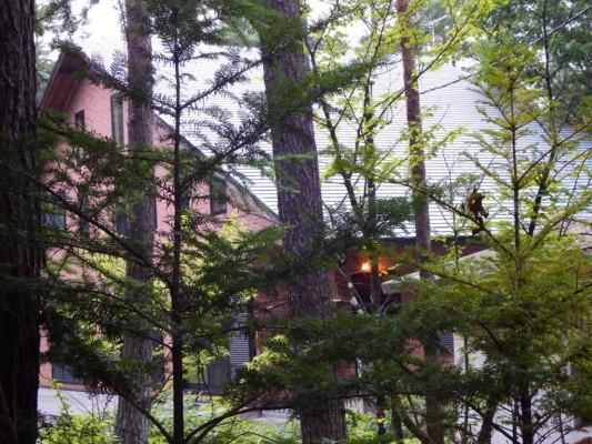 家主が滞在している明りのついた某別荘