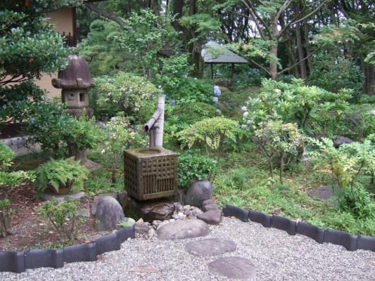 茶室のそばにある井戸