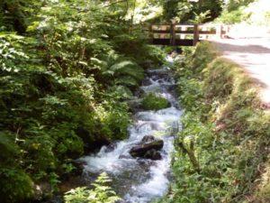 白糸の滝までのせせらぎ遊歩道