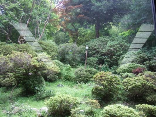 店内の奥の庭