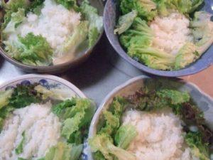 4.器にご飯を盛り、周りにレタスを飾る。