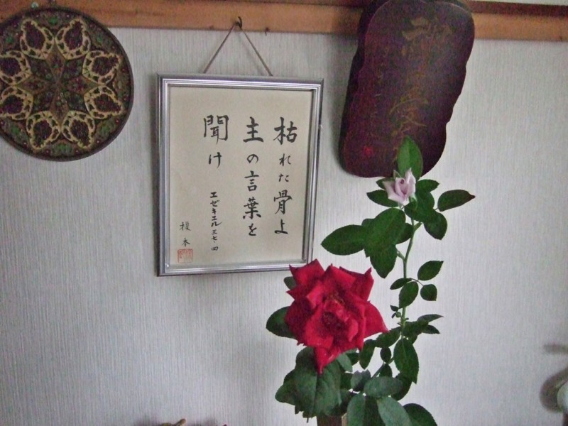 我が家の飾っているバラ