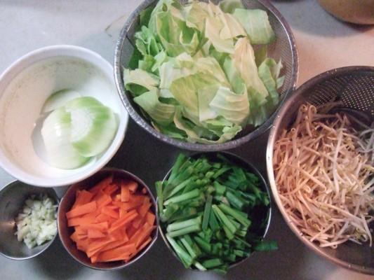 細かくカットした野菜(時計回りで、にんじん・ニンニク・玉ねぎ・キャベツ・もやし・にら)を用意。