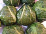 熊野(和歌山県)の郷土料理レシピ「めはりずし」を作る
