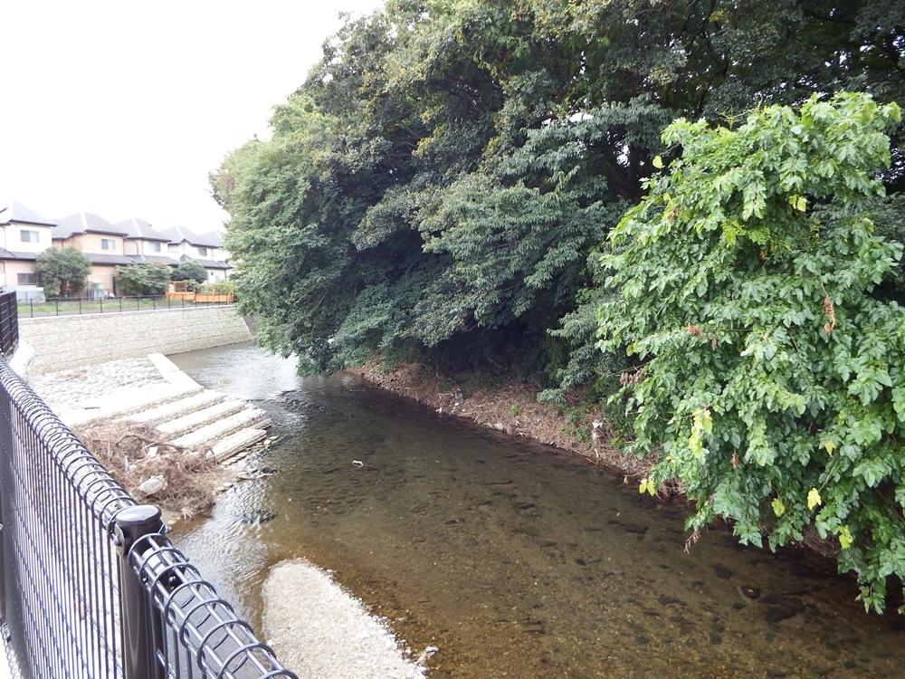 新遊歩道から眺めた柳瀬川
