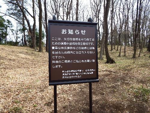 清瀬の森 お知らせ