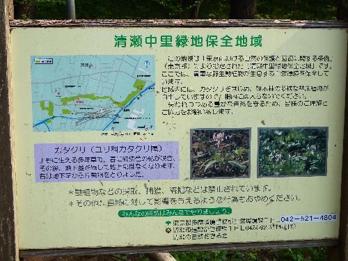 清瀬中里緑地保全地域