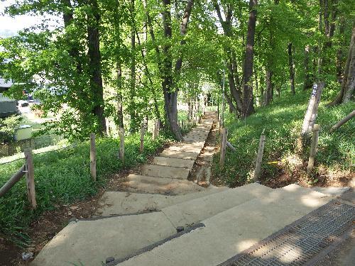 清瀬中里緑地保全地域の階段道