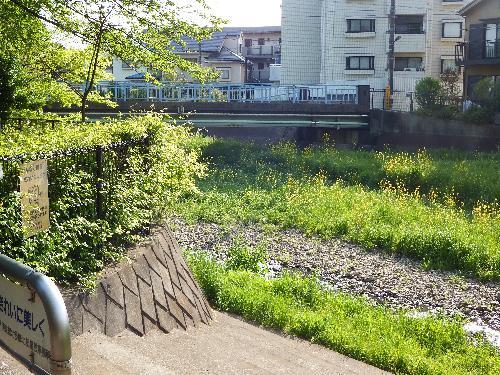 清瀬の森前の空堀川
