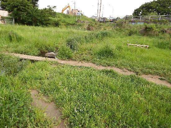 清瀬橋の下の景色
