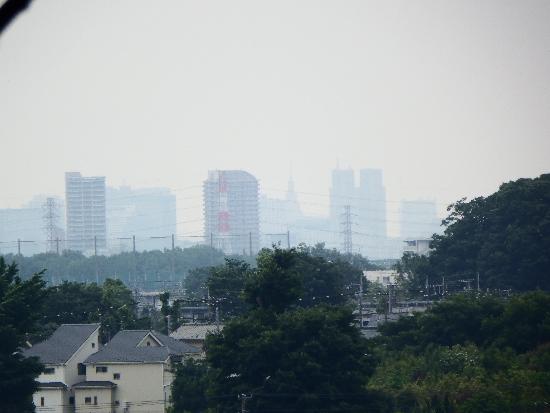 所沢市東所沢和田付近の丘より新宿副都心を望む
