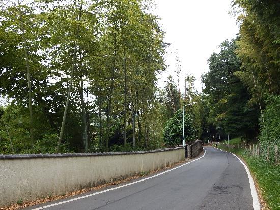 東福寺の通りは長くて急な坂道