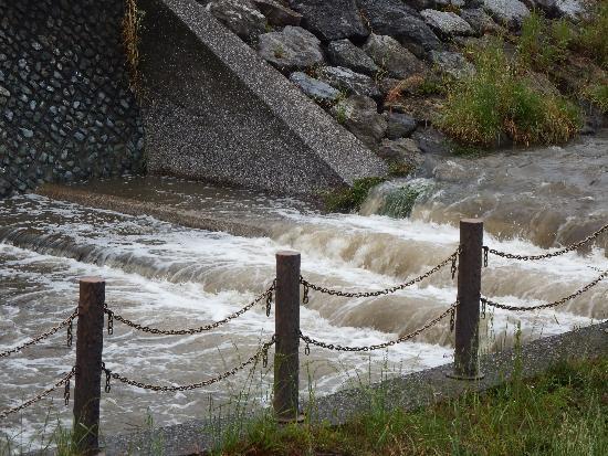 前日の雨量より、勢い良く流れる柳瀬川