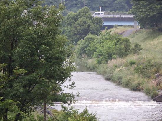 清瀬橋(柳瀬川上流)方面