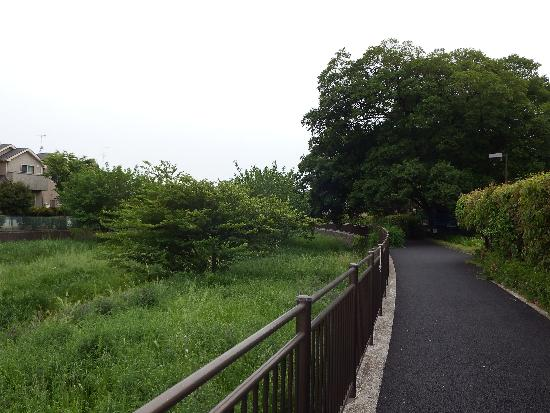 前原橋を通過して野塩橋(上流)方面へ向かう遊歩道