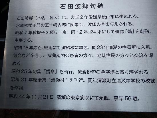 俳句の作者である石田波郷氏によるプロフィール
