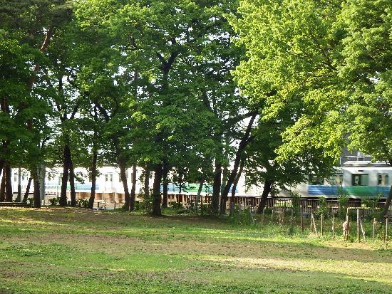 清瀬中央公園の横には線路があり、西武池袋線が頻繁に通過します。