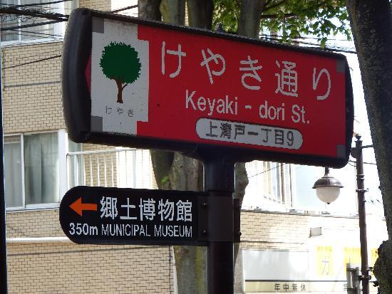 けやき通り(清瀬市上清戸一丁目付近)